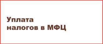 Регистрация ип через мфц срок регистрация ооо в омске под ключ